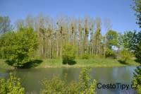 DSC_8900_65553